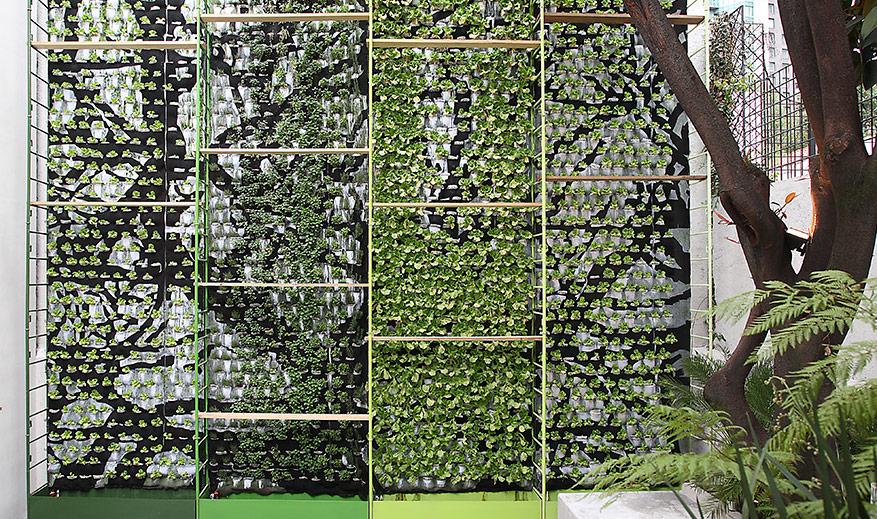 Verticalgreen vertical gardens for Proyecto jardines verticales